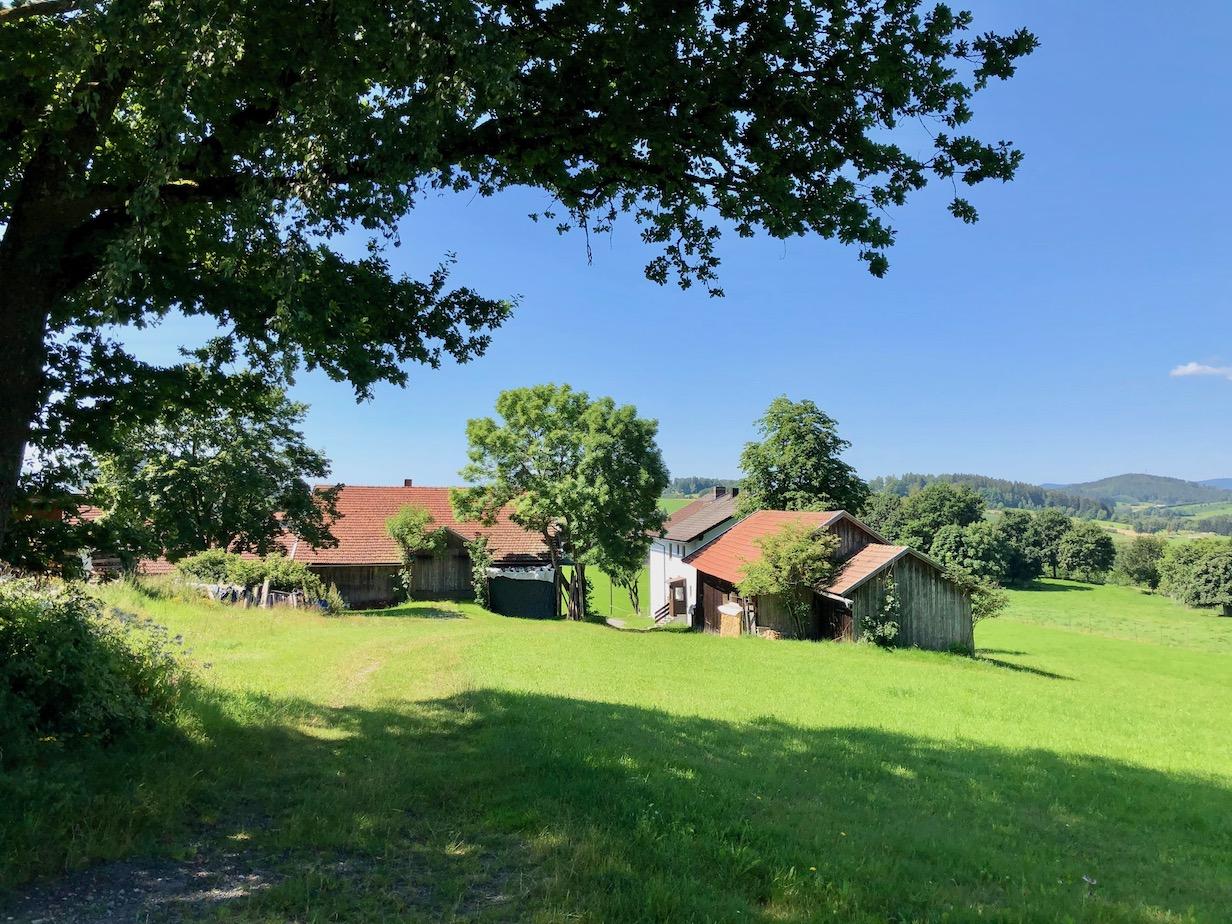 einsamer Bauernhof