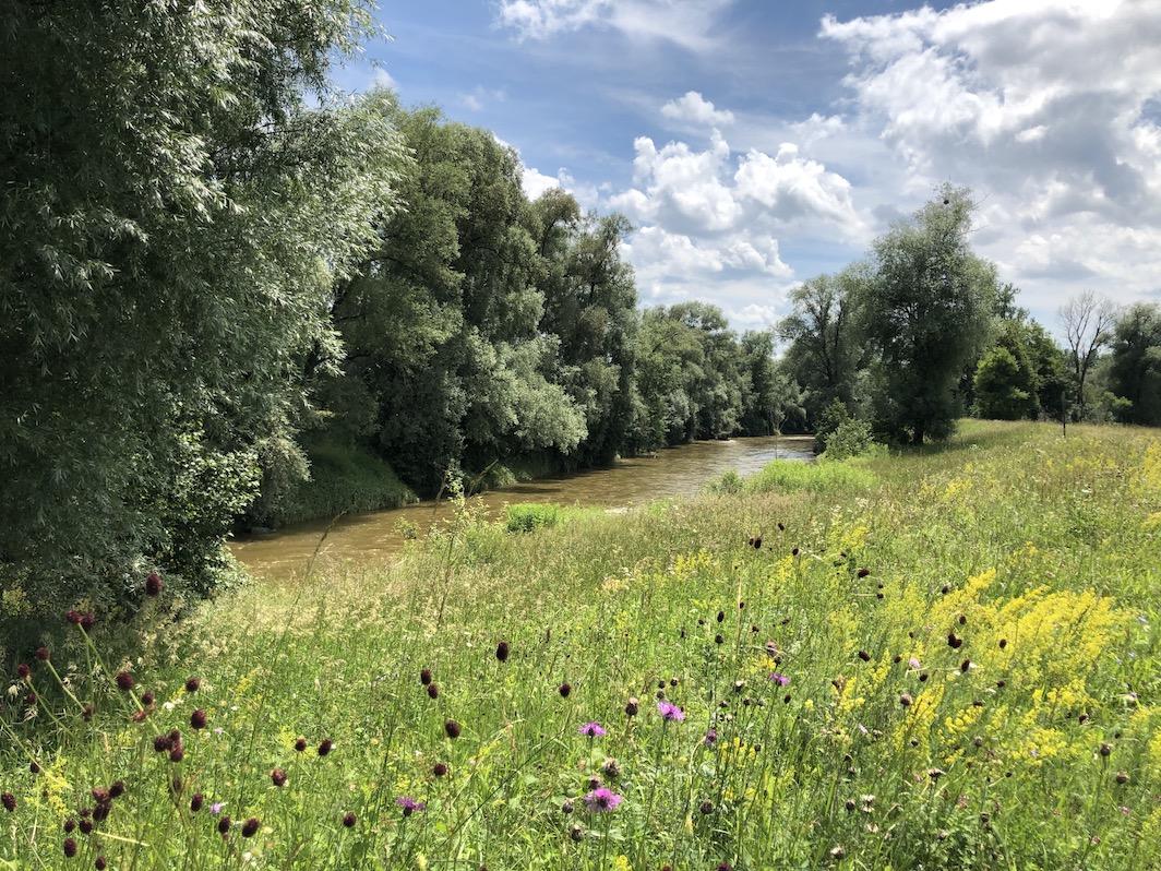 Blick auf die Ammer zwischen Ammersee und Weilheim