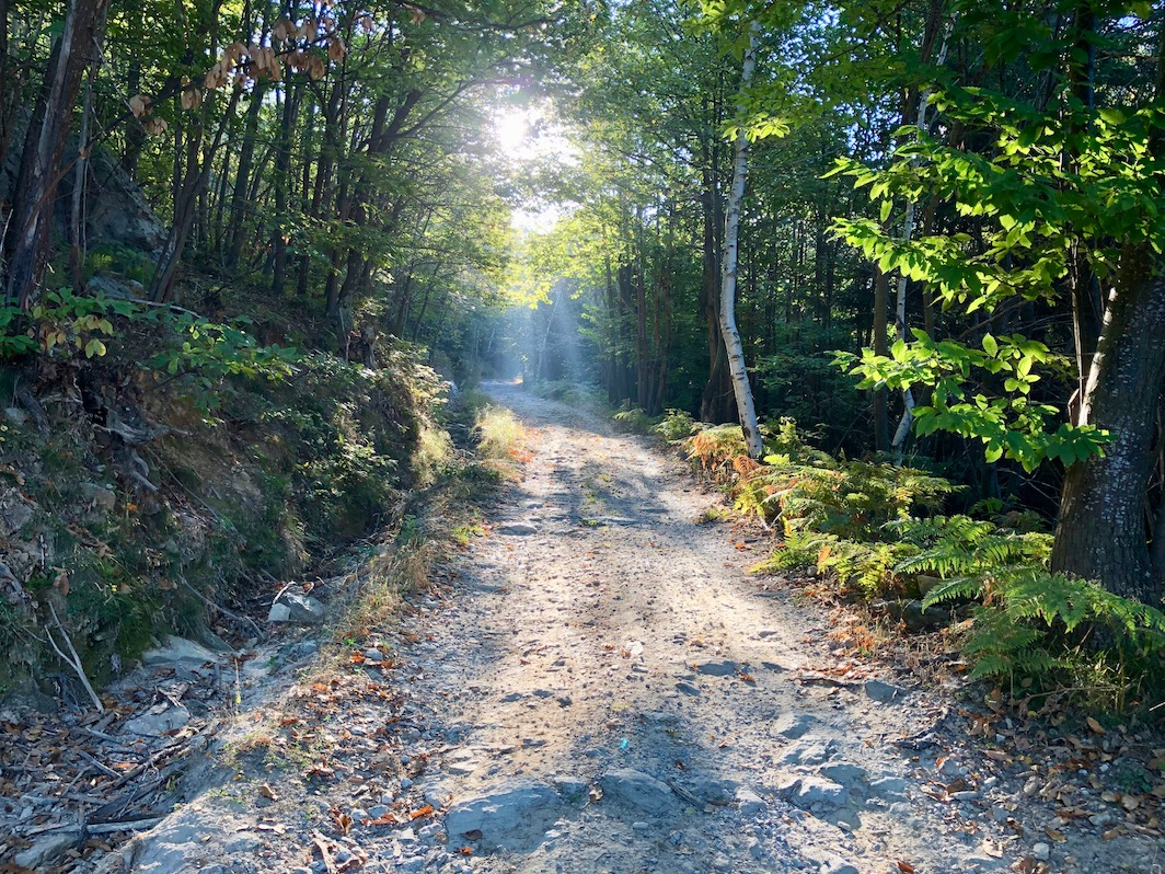 Berghuhn, Italien, Ligurien, Radreise, Radtour, Apennin