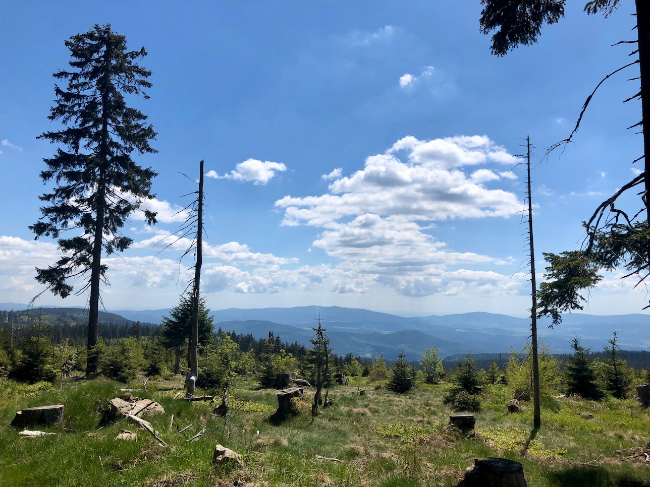 Auffahrt zum Großer Arber, Bayerischer Wald