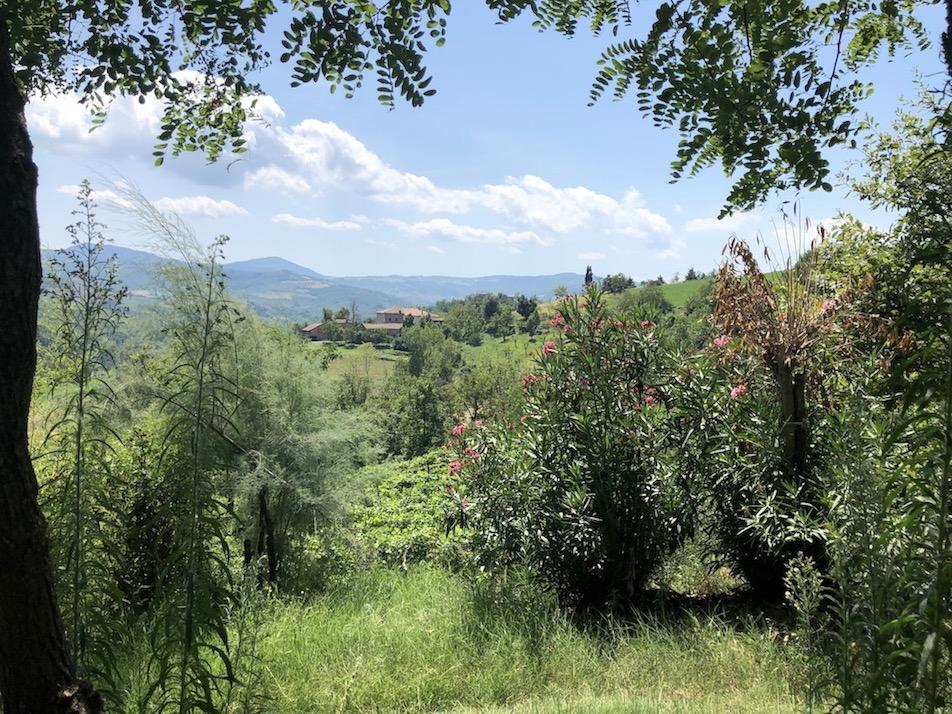 Blick auf grüne Hügel