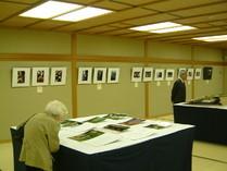 カメラ部-同好会-の展示