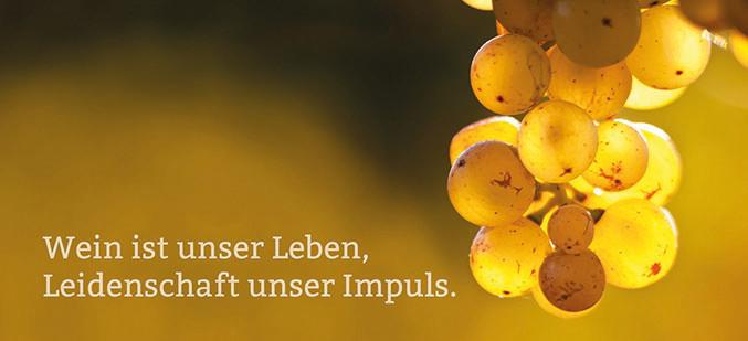 Die neue Broschüre unseres Weinguts!