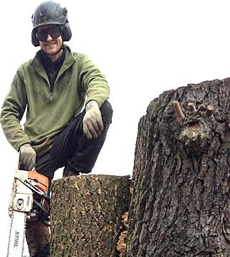 Baumpflege Rohrbeck - Chris Rohrbeck