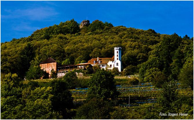 Der oberhalb von Leinsweiler gelegene Slevogthof.
