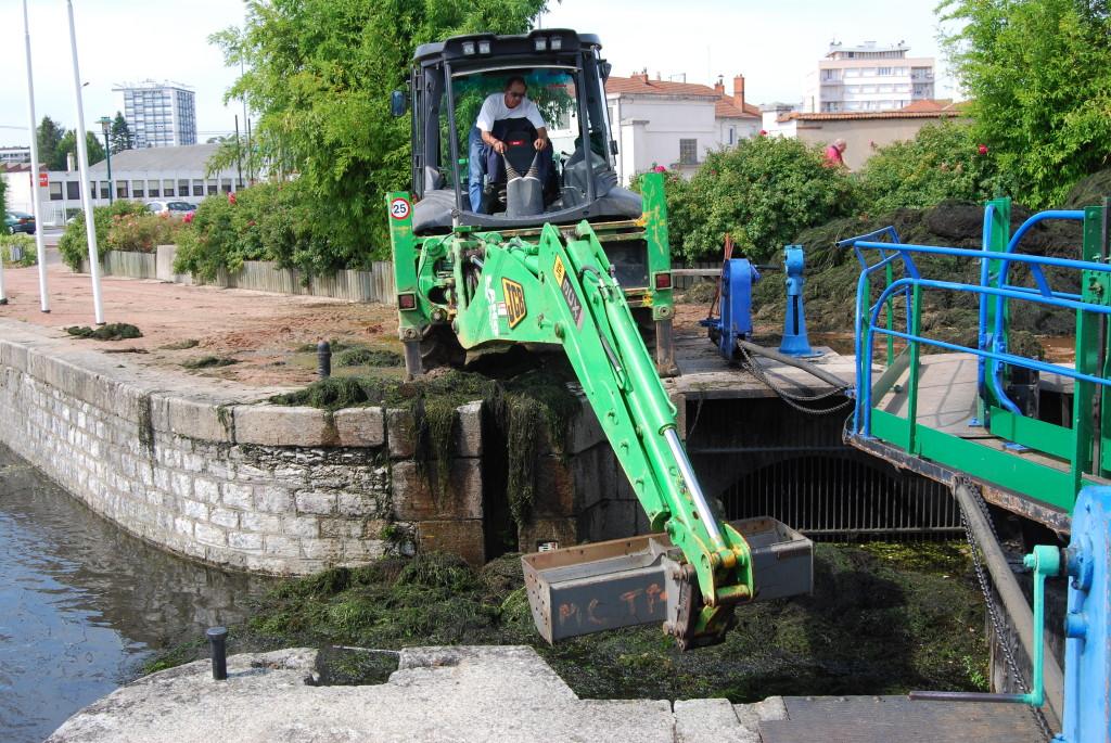 Algenalarm in Roanne