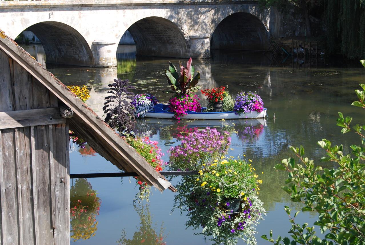 Blumenpracht auf der Loing bei Montbouy