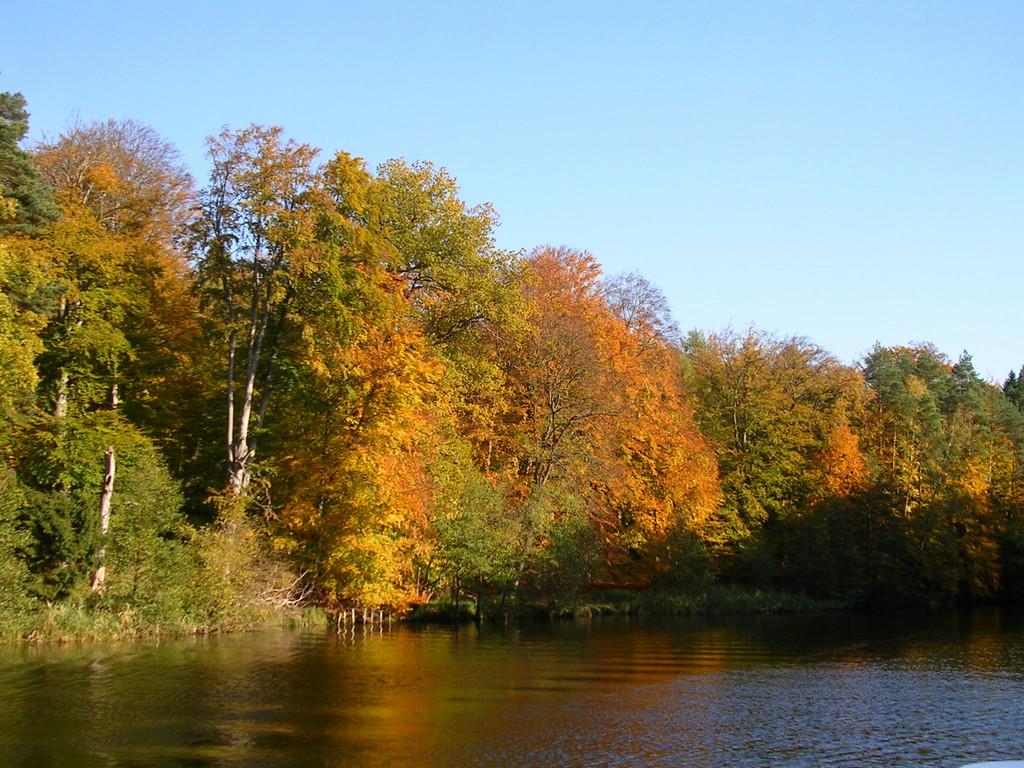 Herrliche Herbststimmung an der oberen Havelwasserstrasse