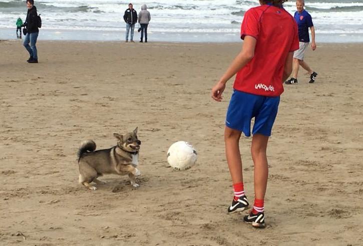 Jacky kwam een paar leuke voetballende jongetjes tegen op het strand. Foto: Tamara van Taanom