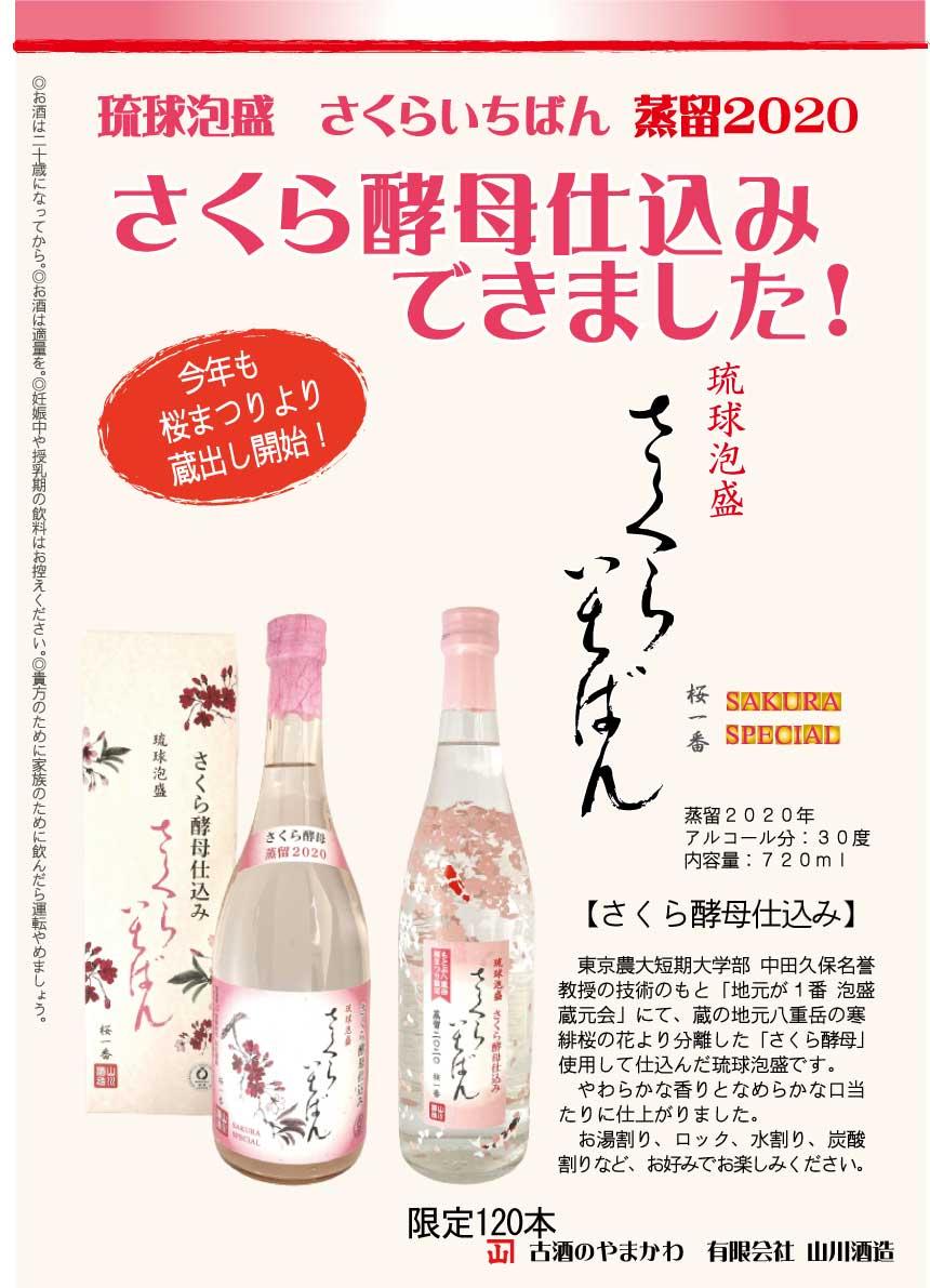 さくら酵母さくらいちばん蒸留2020発売!もとぶ八重岳桜まつり開催!
