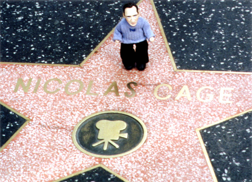 in Hollywood