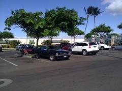 Ben's Mustang Parkplatz Maui, Hawai