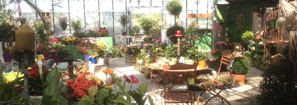mobilier de jardin, décorations, topiaires, plantes annuelles et vivaces