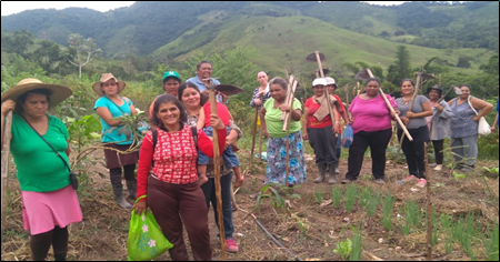Community work, Agroecological Network of Women Farmers, Vale do Ribeira. Photo: SOF archives.