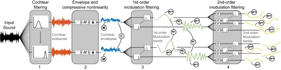 Auditory texture model and statistics.
