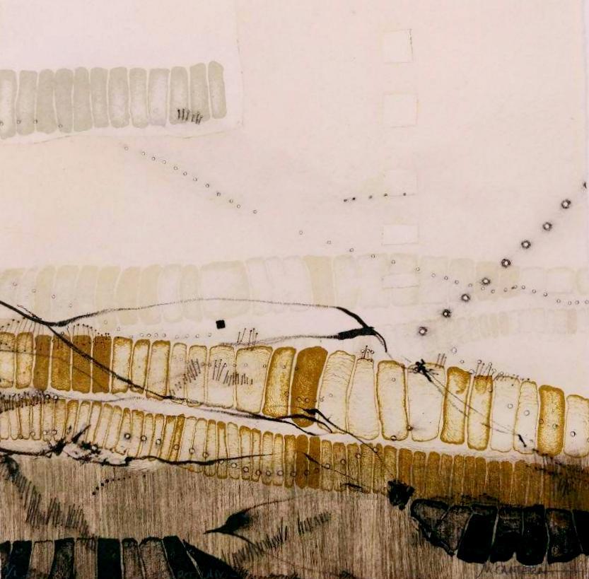 CIRCOLADO, Litografía 20 x 20 cm.