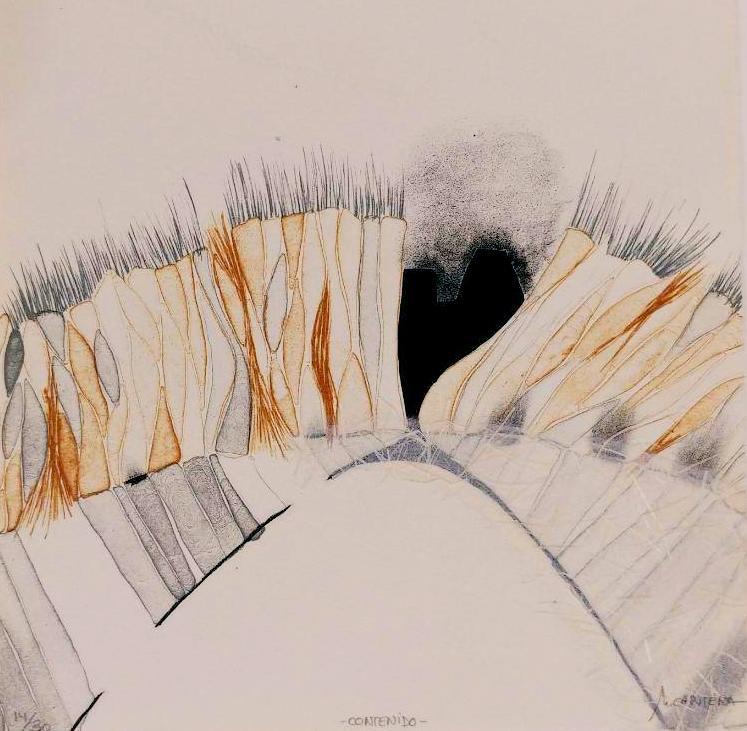 CONTENIDO,  Litografía 20 x 20 cm.