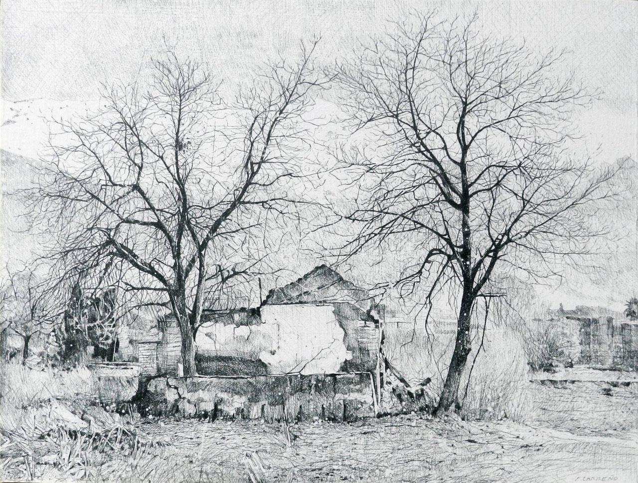 Ruinas y árboles en la Vega. Lápiz sobre tabla 38 x 30cm