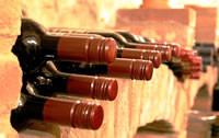 Weinkeller Klimatisierung