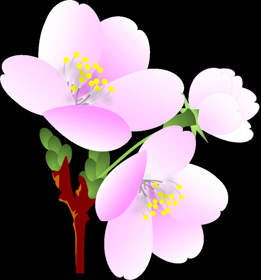 ExcelArt 桜のイラスト