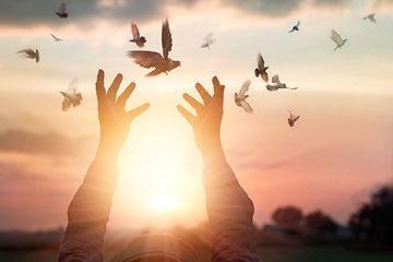 Ho'oponopono - Freiheit und Frieden durch Vergebung