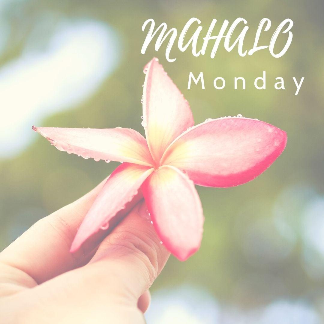 It's Mahalo Monday!