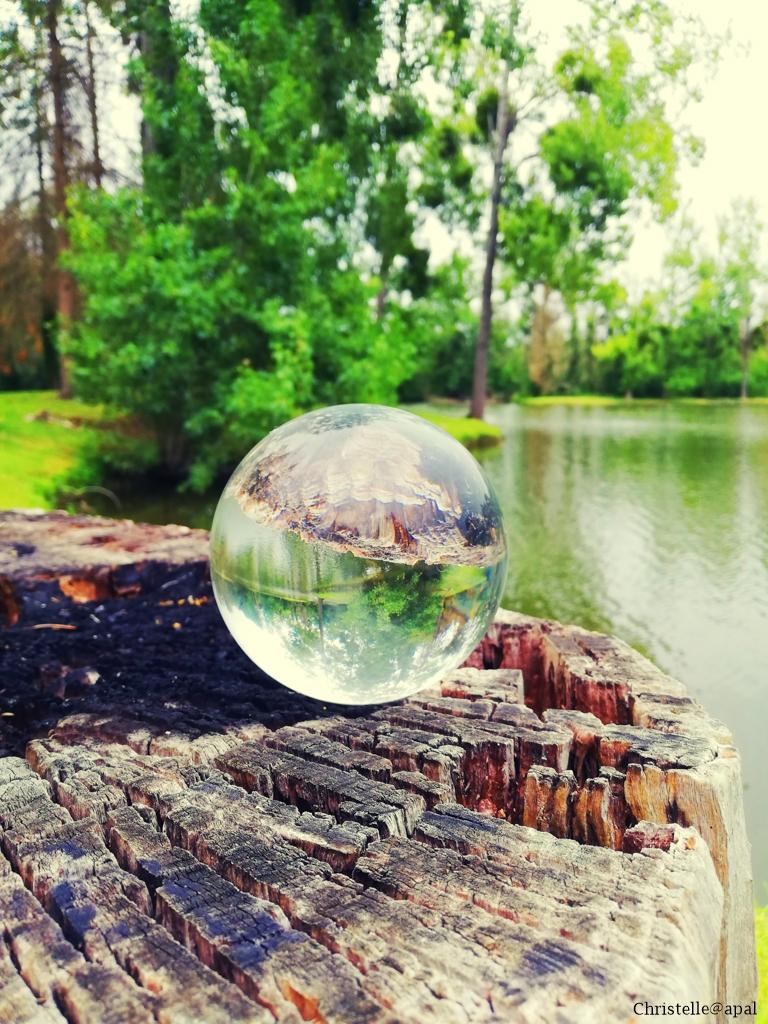 A l'étang