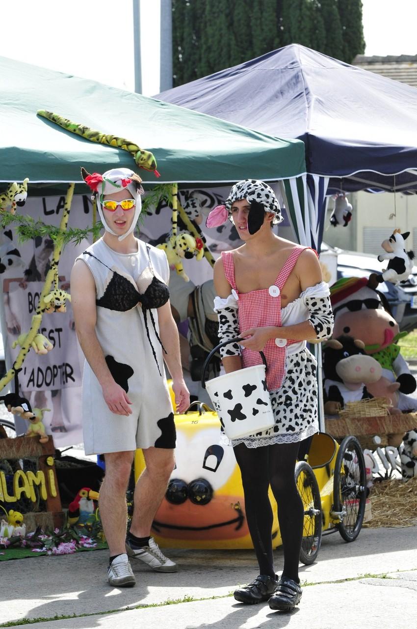 Oh les vaches - photo proposée par Pascale B.
