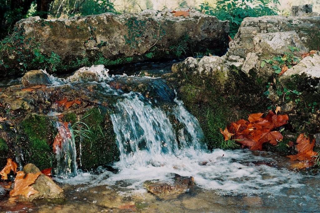 Petit ruisseau en autonne