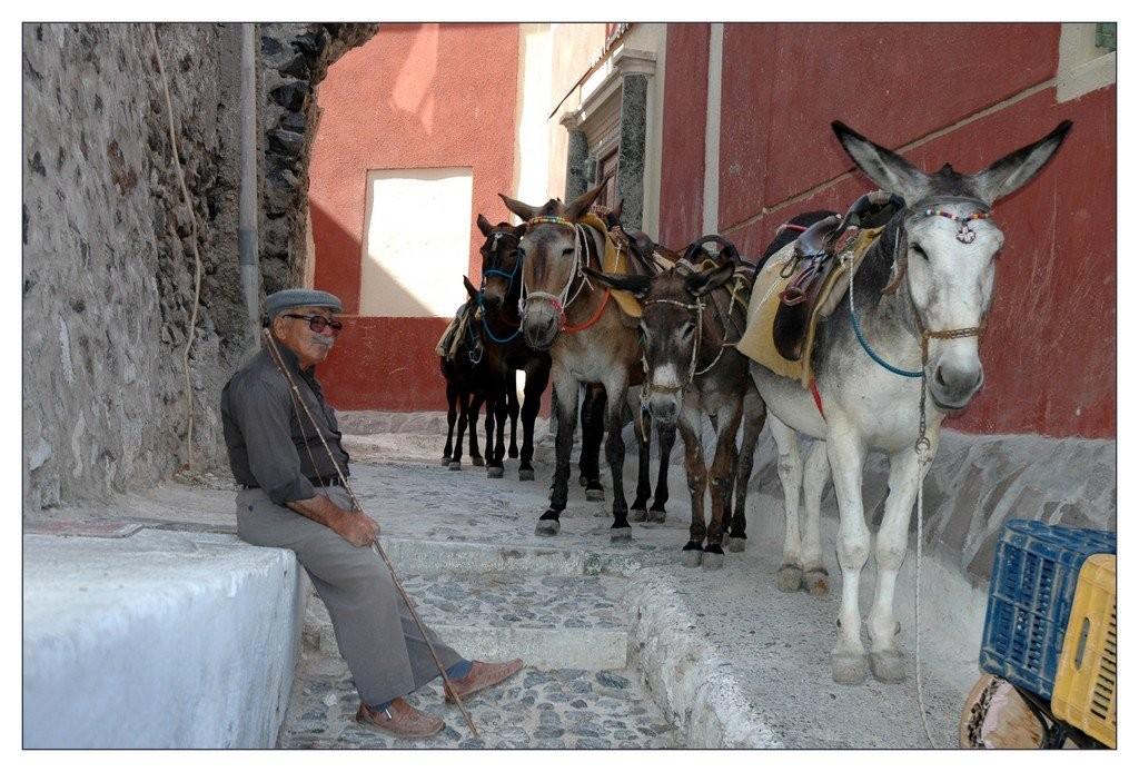 Transports Grecs - Santorin