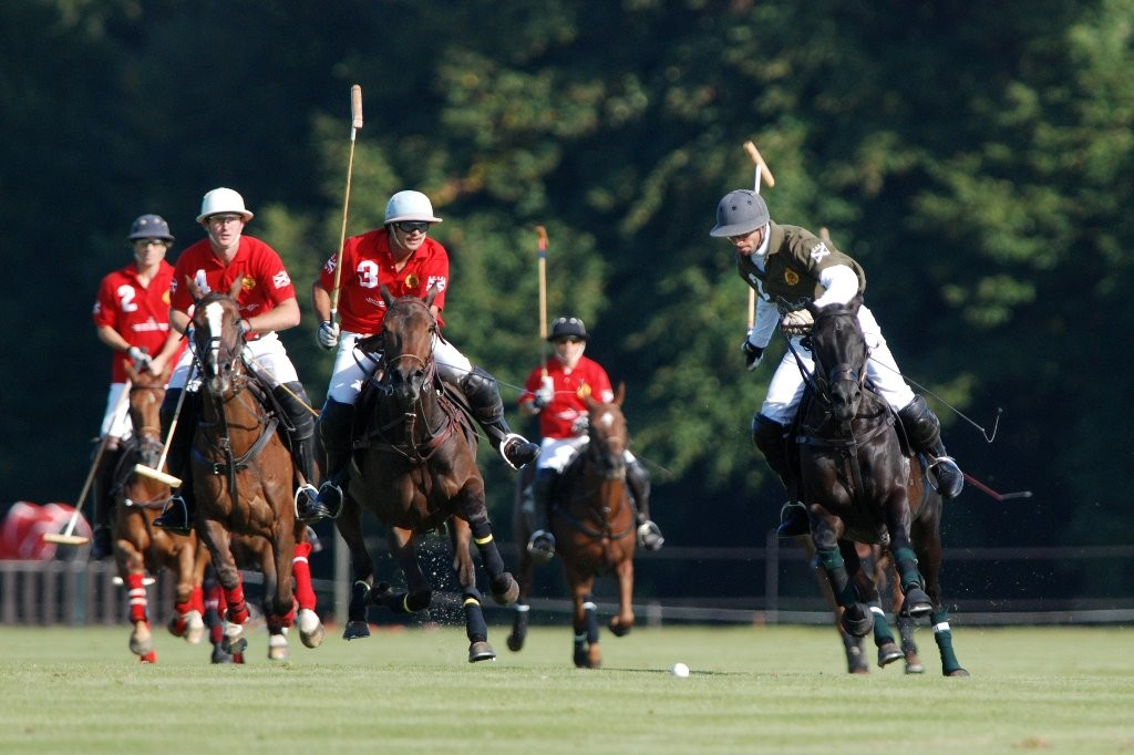 Didier : polo