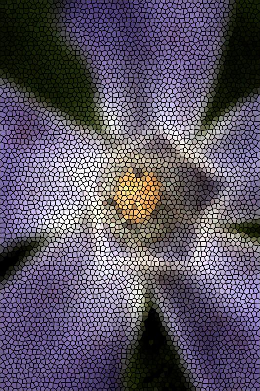 Pascale - Kaléidoscope