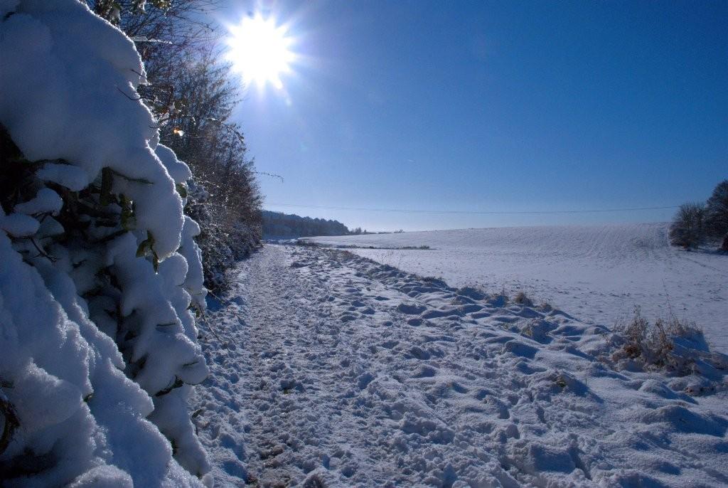 Soleil hivernal (Marie Claude)