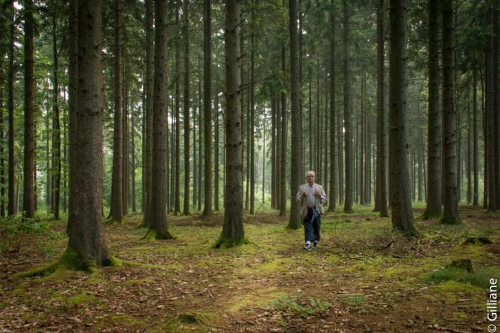 La forêt de Vercemont
