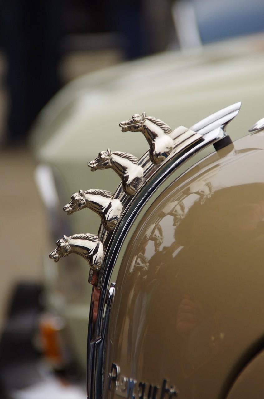 4 chevaux - photo proposée par Bruno K