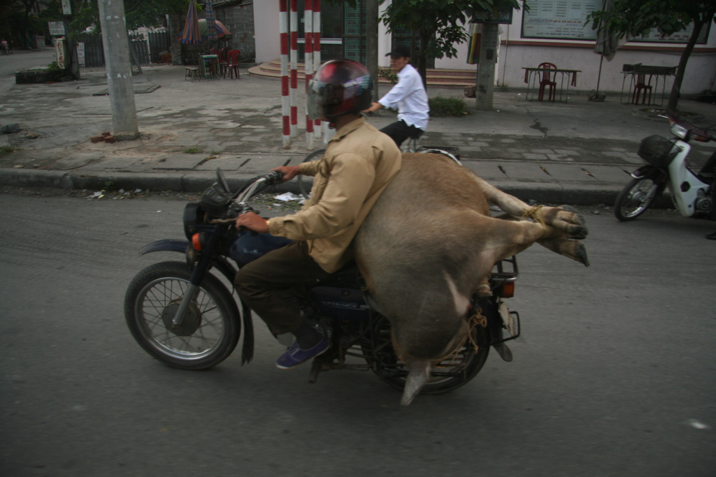 Transport pas commun - André