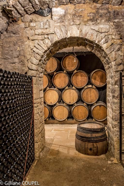 Gilliane : Route des Grands crus, Gevrey-Chambertin, caves Philipe Leclerc