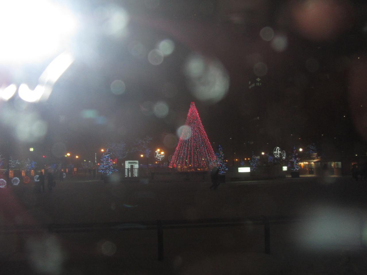大通公園は -5度 寒い