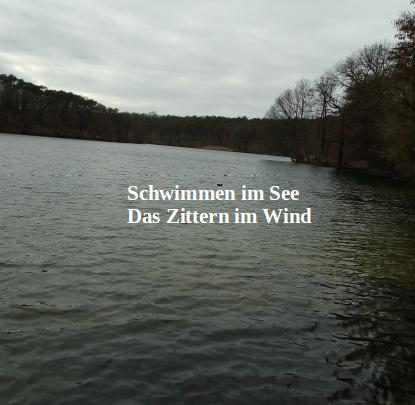 Schwimmen im See: Das Zittern im Wind