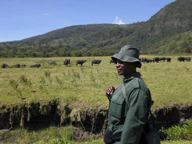 Walkingsafari im Arusha Nationalpark