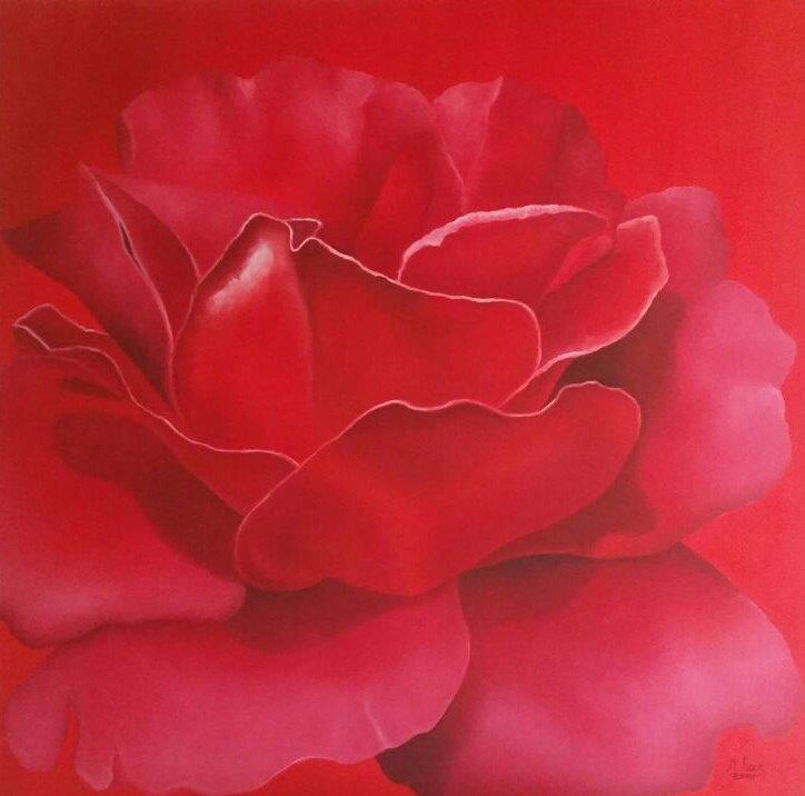 Rote Rose, 2016, 1 m x 1 m, Ölfarbe auf Leinwand