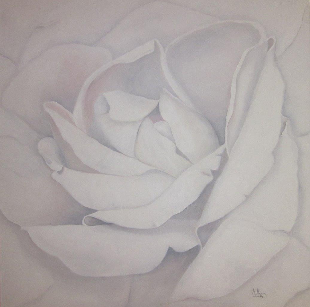Weiße Rose, 1 m x 1 m, Ölfarbe auf Leinwand