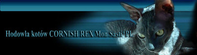 Cornish Rex Cattery MonSasti*PL