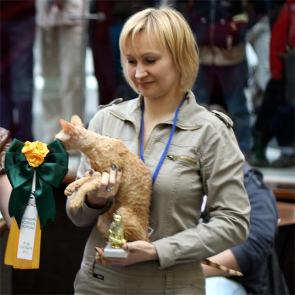 Antey 5,5 months, Best Kitten CRX