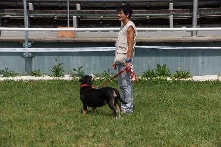 Karin mit Fibi von den Amperauen