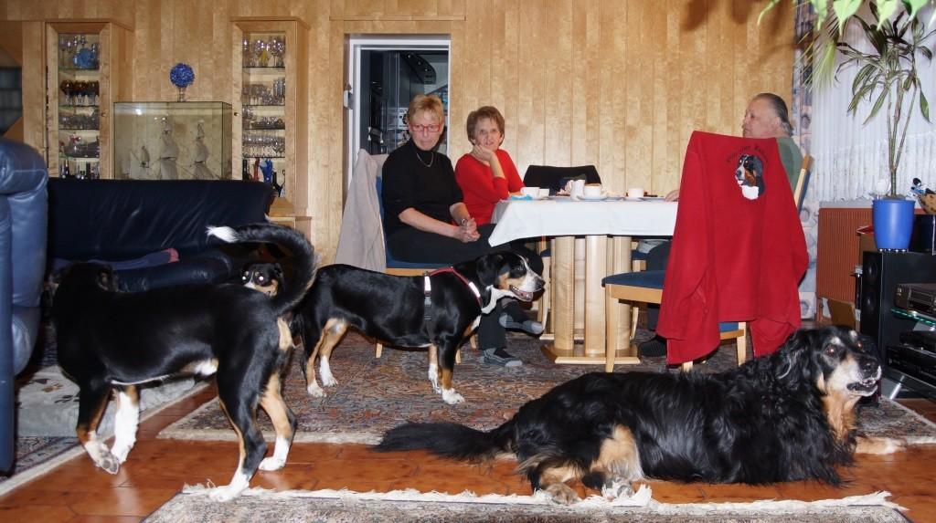Balu mit seiner Familie