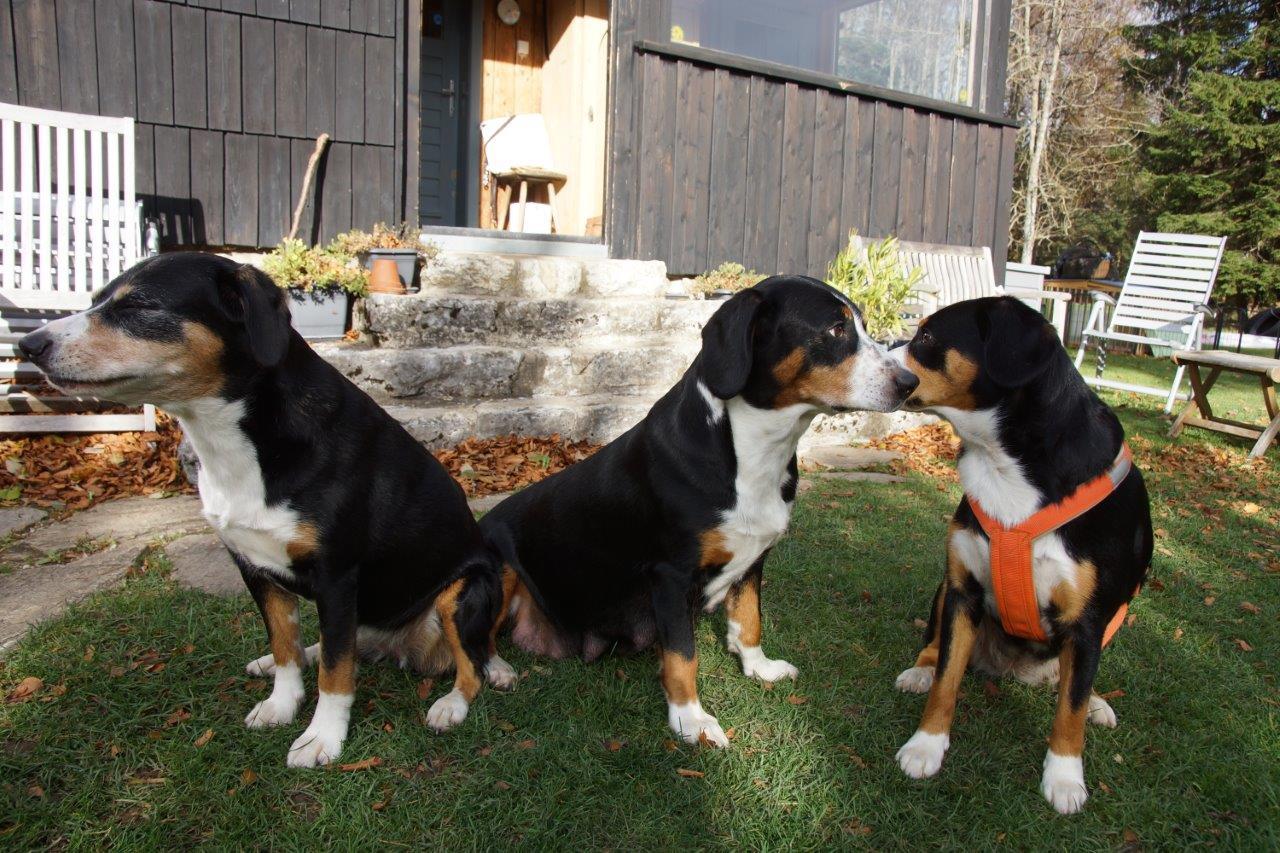 Berta, Dorli und Burgi
