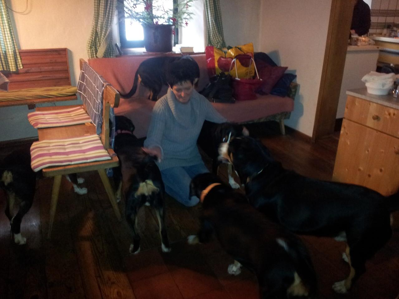 Mama Karin mit ihren Hundekindern