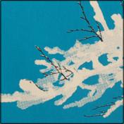 Végétation hivernale (cartes 2 couleurs)