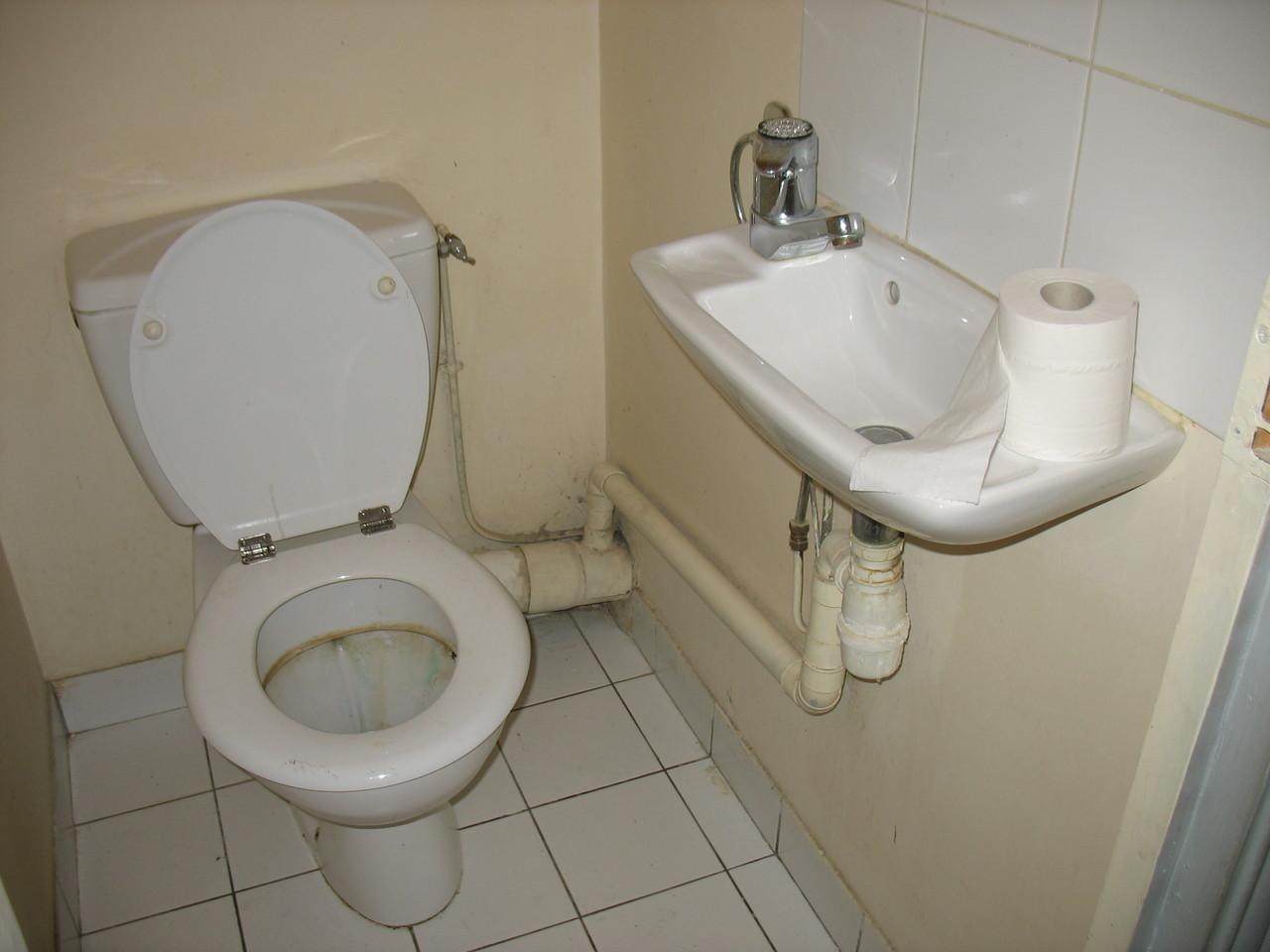 Before renovation: toilet